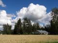 Süd Estland