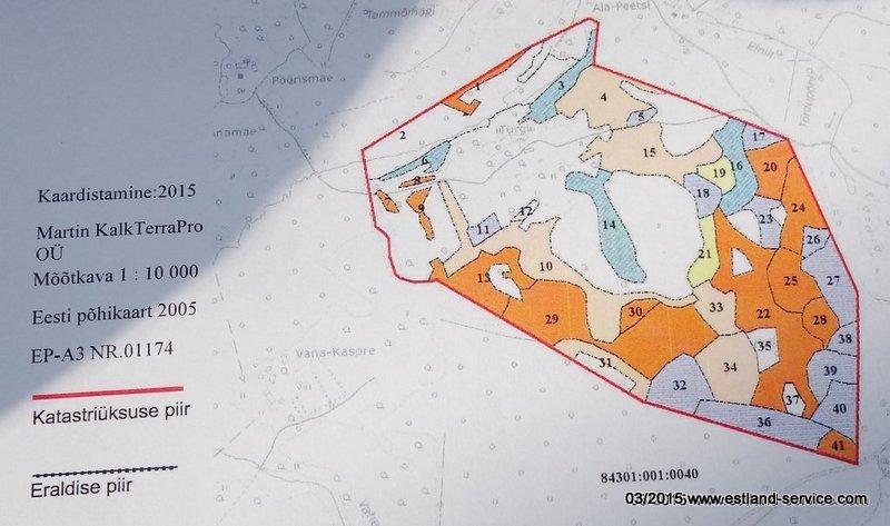 grundstücksplan-54ha-tuergi