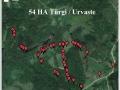 54-ha-tuergi-urvaste-1