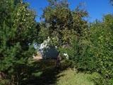 immobilienangebot-estland-2832440-13
