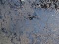 Winter Süd Estland
