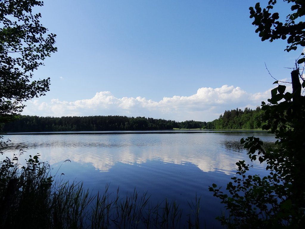 Estland Saare