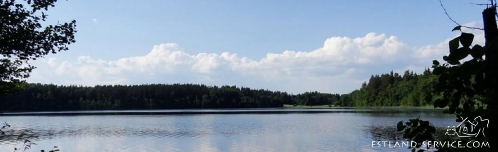 UBUNTU Estland