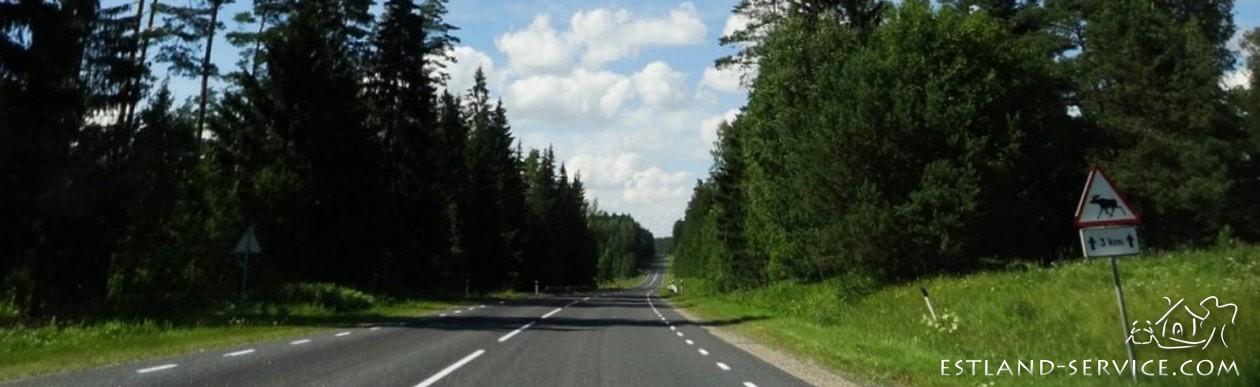 Estland Service