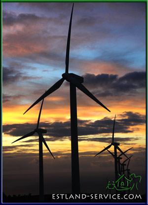 ubuntu estland projekt energie